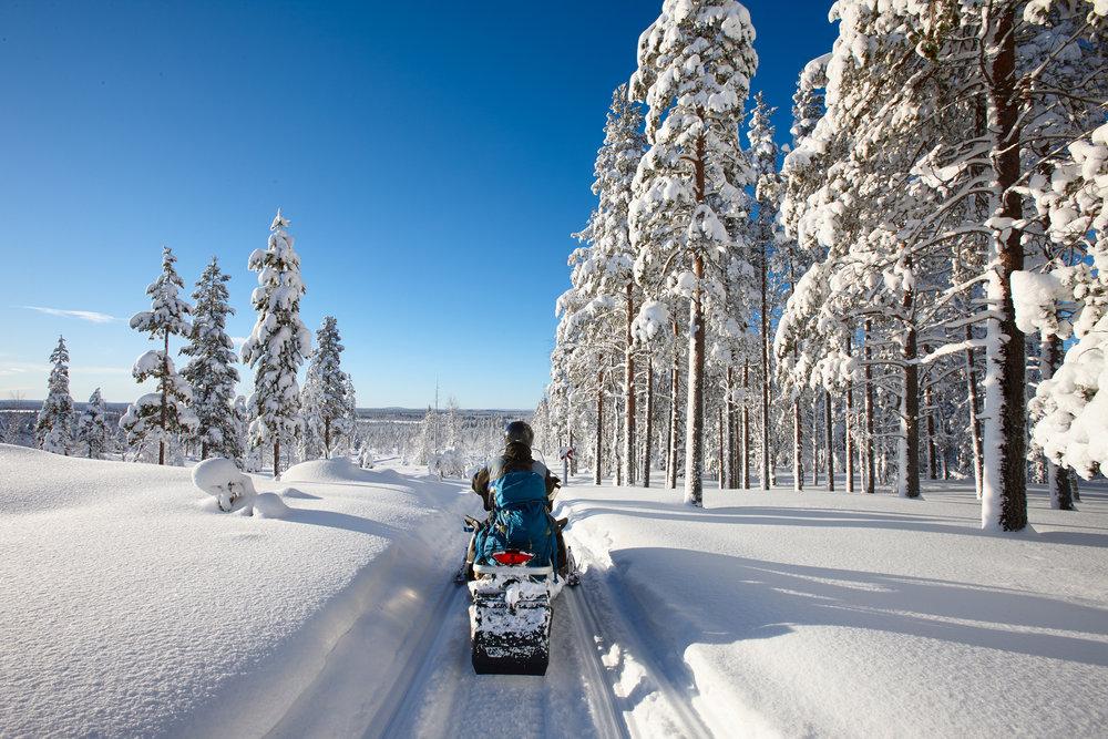 Snowmobile Tour -