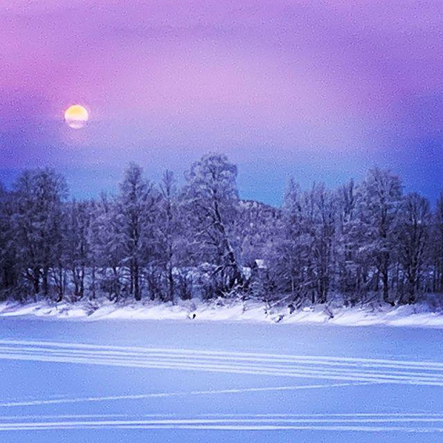 Beautyful Morning @sweden @swedishlapland @visitswedende @visitsweden @heartoflapland @overtorneakommun @original_lapland_tornedalen @destinationovertornea #fantastictime #winterwonderland #polarcircle #instasweden #torneälv