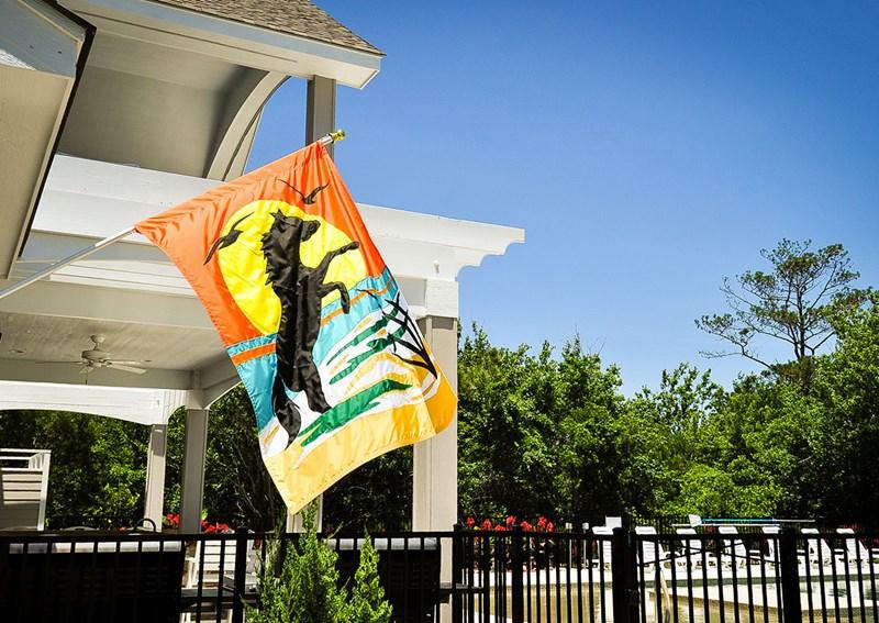 The Black Stallion flag