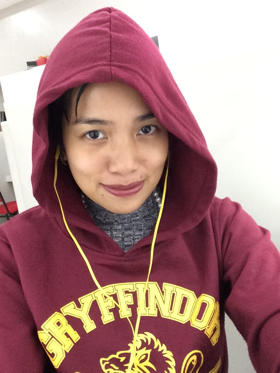 #nofilter Gryffindor in my cold office!