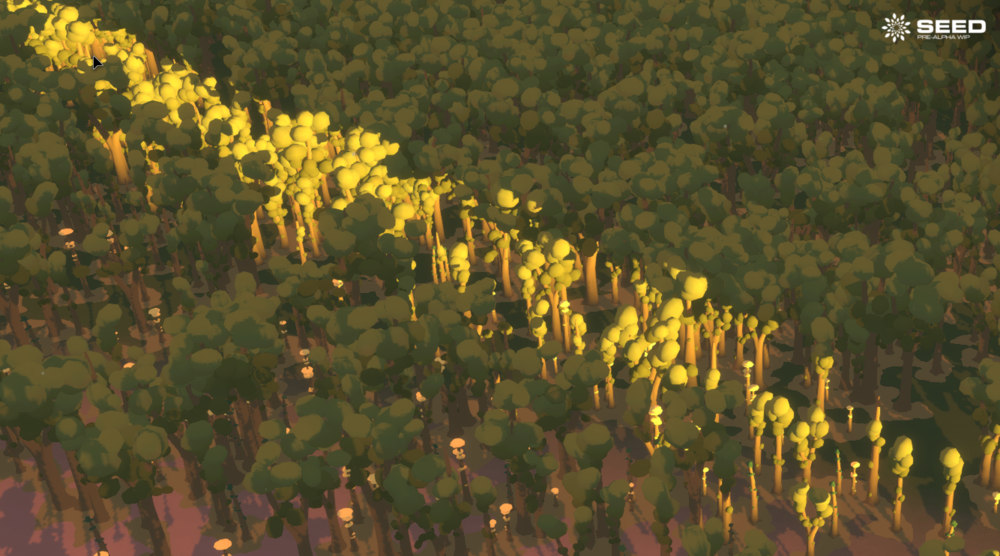 Seed Trees at Dawn WIP.png