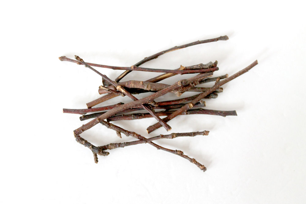 wood-twigs.jpg