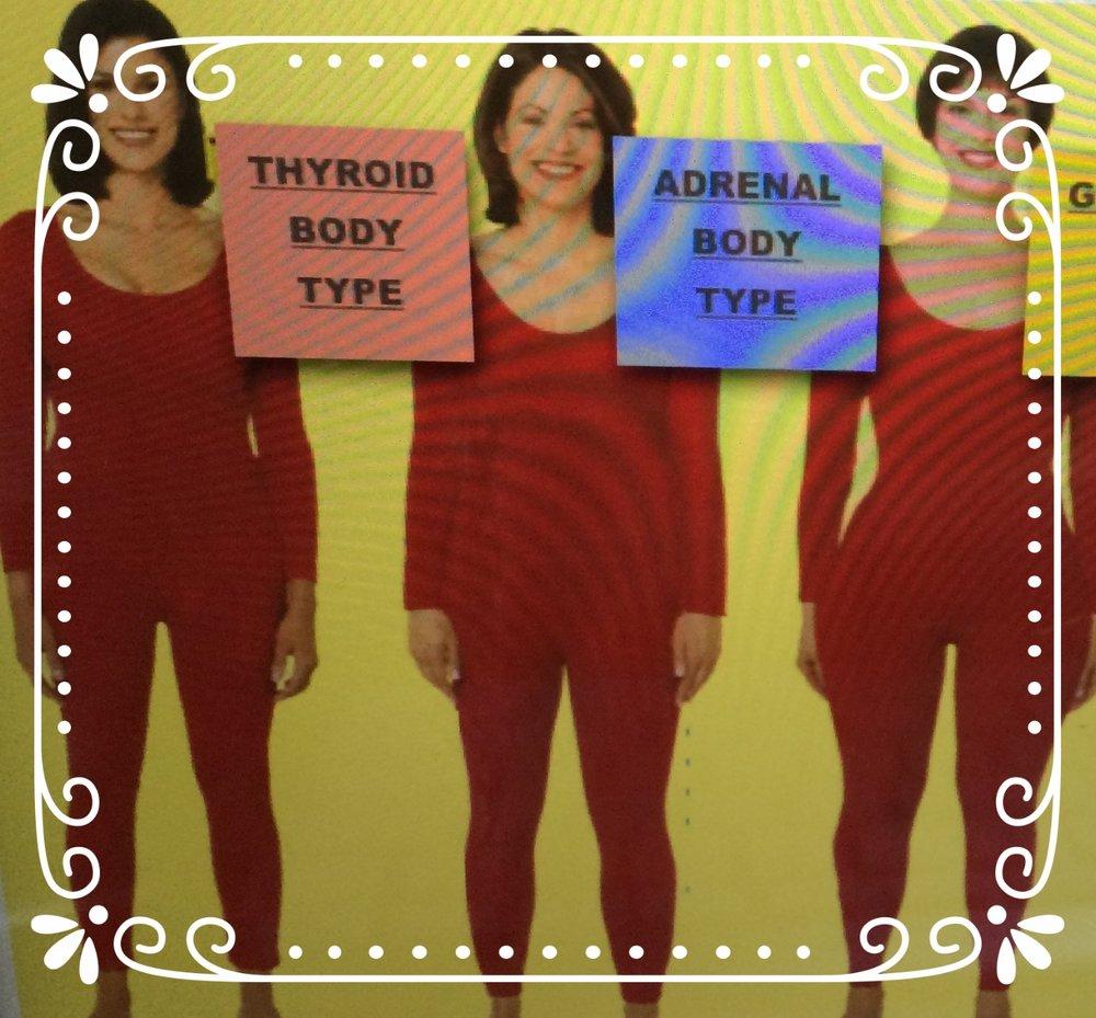 Diététique naturelle - morphologie et nutrition - body typing