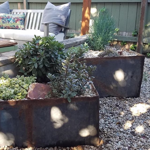 We're typically black thumbs so we're ecstatic about how well our plants are doing this year. We built these metal planters last summer and we ❤ ❤ ❤ them!