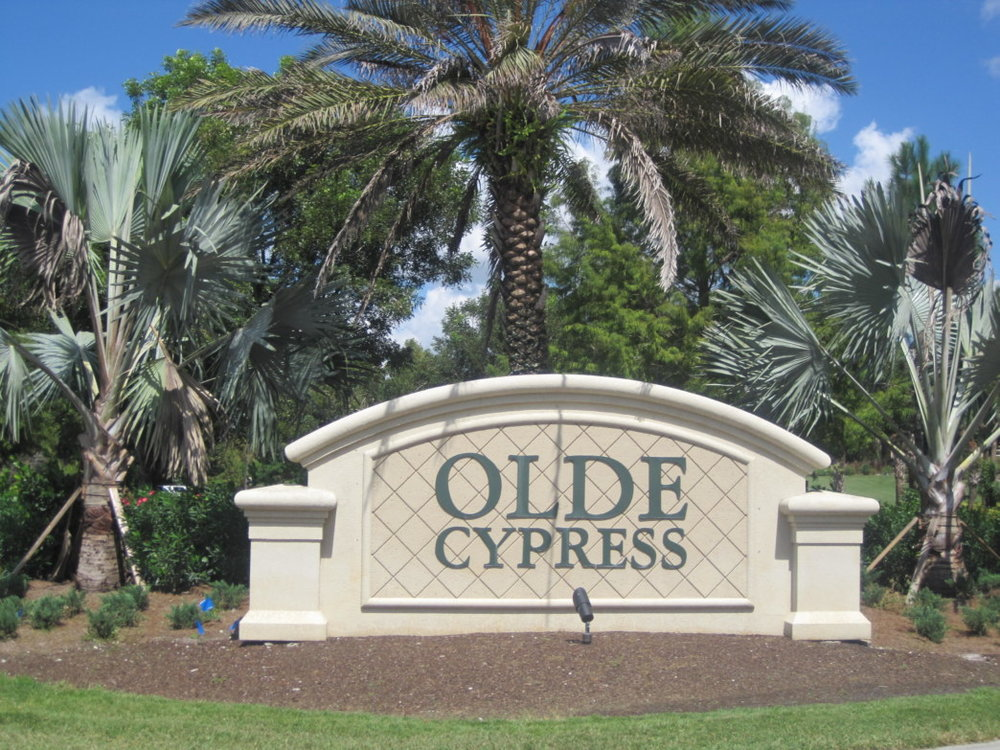Inspector-Gadget-Home-Services-Olde-Cypress-Naples-Florida-photo