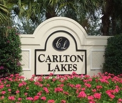 Joe-the-Home-Pro-Carlton-Lakes-Naples-Florida-photo