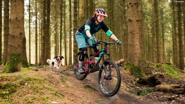 Mountain/Trail Bike Offerings - Casual, hardtail, and full-suspension bikes,in both men's and women's specific geometries.