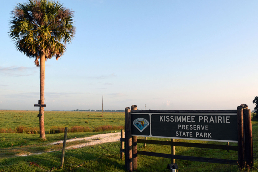 Kissimmee Prairie Preserve State Park - This 54,000 acre preserve protects the largest remaining stretch of Florida dry prairie, home to an array of endangered plants and animals. More than 100 miles of dirt roads allow hikers, bicyclists and equestrians to explore prairies, wetlands and shady hammocks.