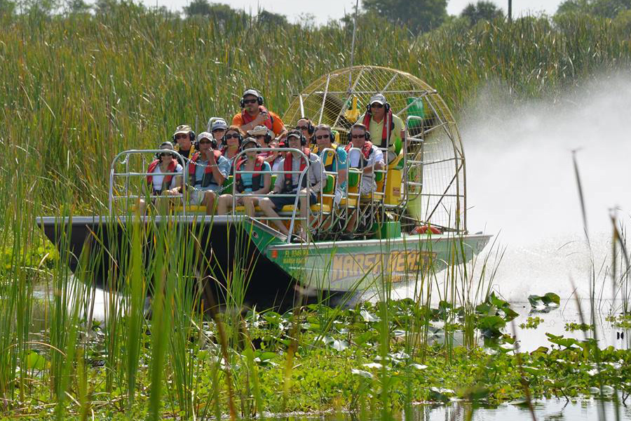 Marsh Beast Airboat Tours - Airboat Tours on the Marsh Beast are much more than just an airboat ride. It's an airboat tour, eco excursion, and wildlife adventure tour!  You'll have the unique chance to see Florida's nature at it's best on board the Marsh Beast.