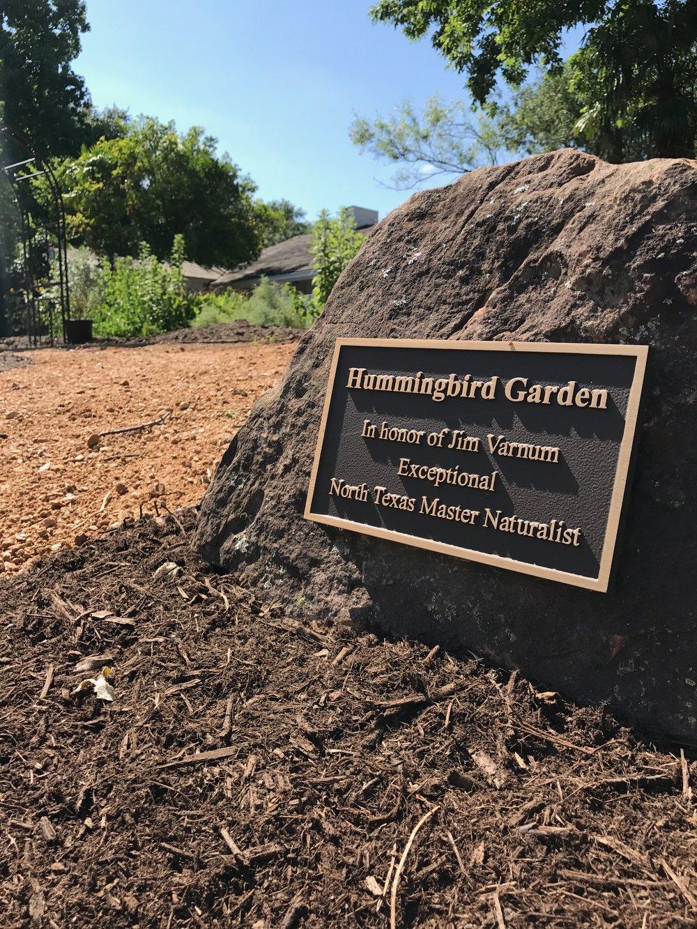 Hummingbird Garden.jpeg