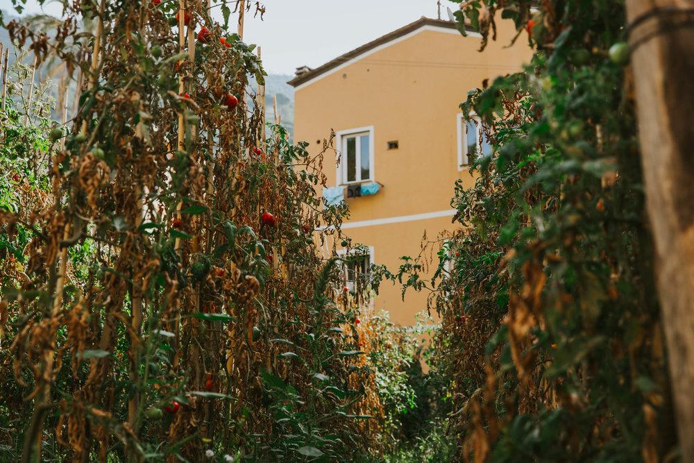 maryattphotography_cinqueterre-7622.jpg