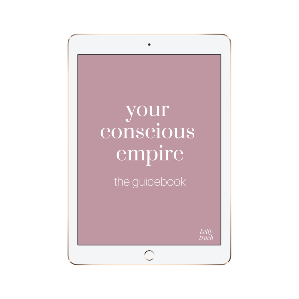The Guidebook - You handbook that teaches you how to eradicate any mindset blocks holding you back, discover your zone of genius, find your ideal client, and turn your passion into profit.