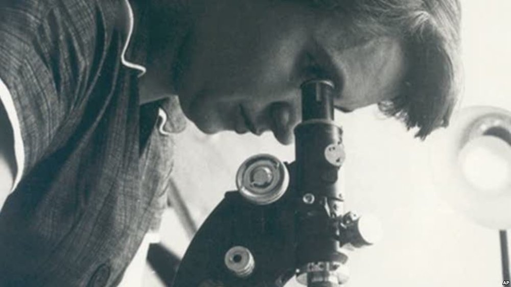 Rosalind Franklin. Who is she? What did she contribute to the discovery of the structure of DNA? Why didn't she get the Nobel Prize with Watson and Crick?
