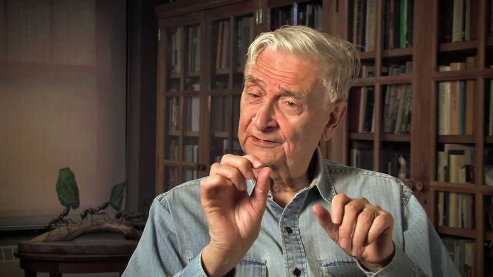 EDWARD O. WILSON   Harvard myrmecologist (ant expert), sociobiologist, naturalist, conversationalist, advocate for biodiversity and champion of the notion of (Consilience) the unity of knowledge.