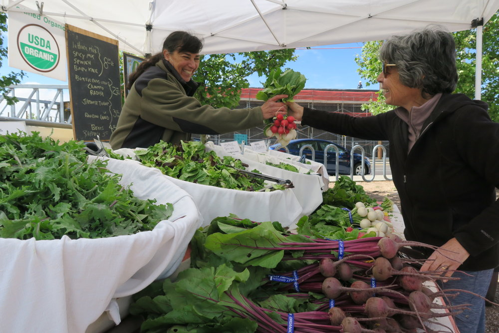 Farmers Market in Albuquerque, New Mexico Farmers' Marketing Association