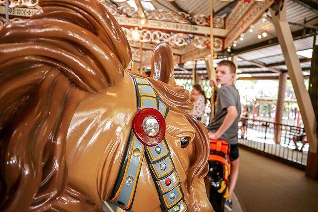 Knoebels Grand Carousel 🎠  #knoebels #grandcarousel #carousel #amusementpark #rides #detail #art #vintage #classic #photography