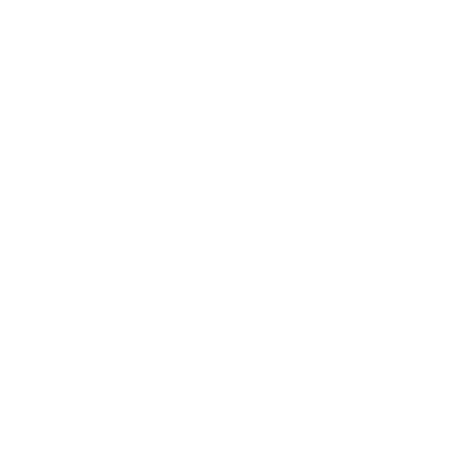 Hollow Doors