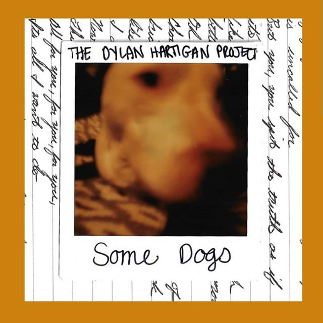 "Two awesome releases out this week! @dylanhartiganmusic new single ""Some Dogs"" and @thesilversnails album ""The 7 Melodies""! Head over to wherever you listen to music and check them out!"