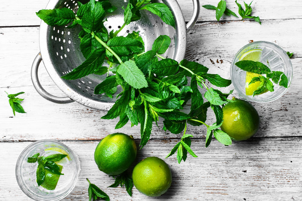 stock-photo-water-ice-fruit-lemon-green-white-drink-alcohol-glass-424c456a-9a82-4fe7-a1e0-7f33a888fcd3-1.jpg