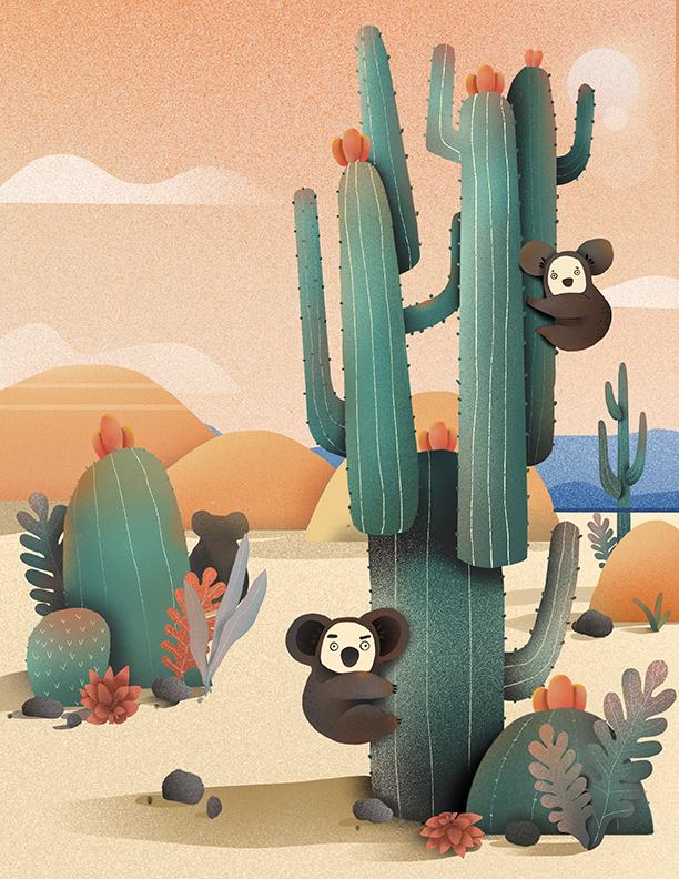 Koala in desert .jpg