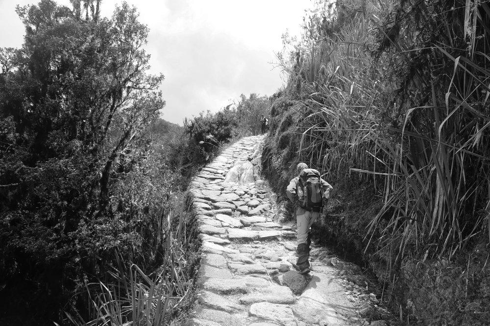 Inca Trail, Peru, 2016