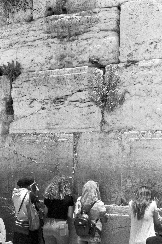 Western Wall, Jerusalem, 2017
