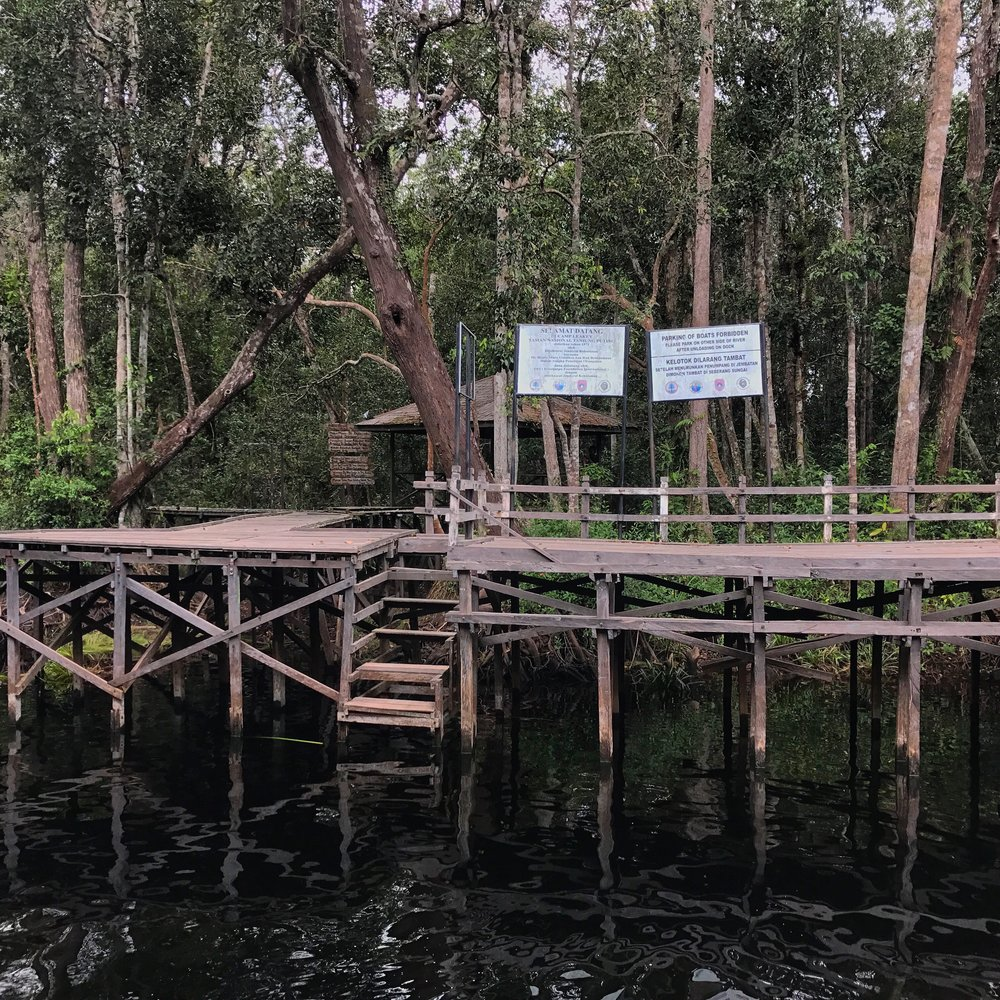 The dock at Camp Leakey.