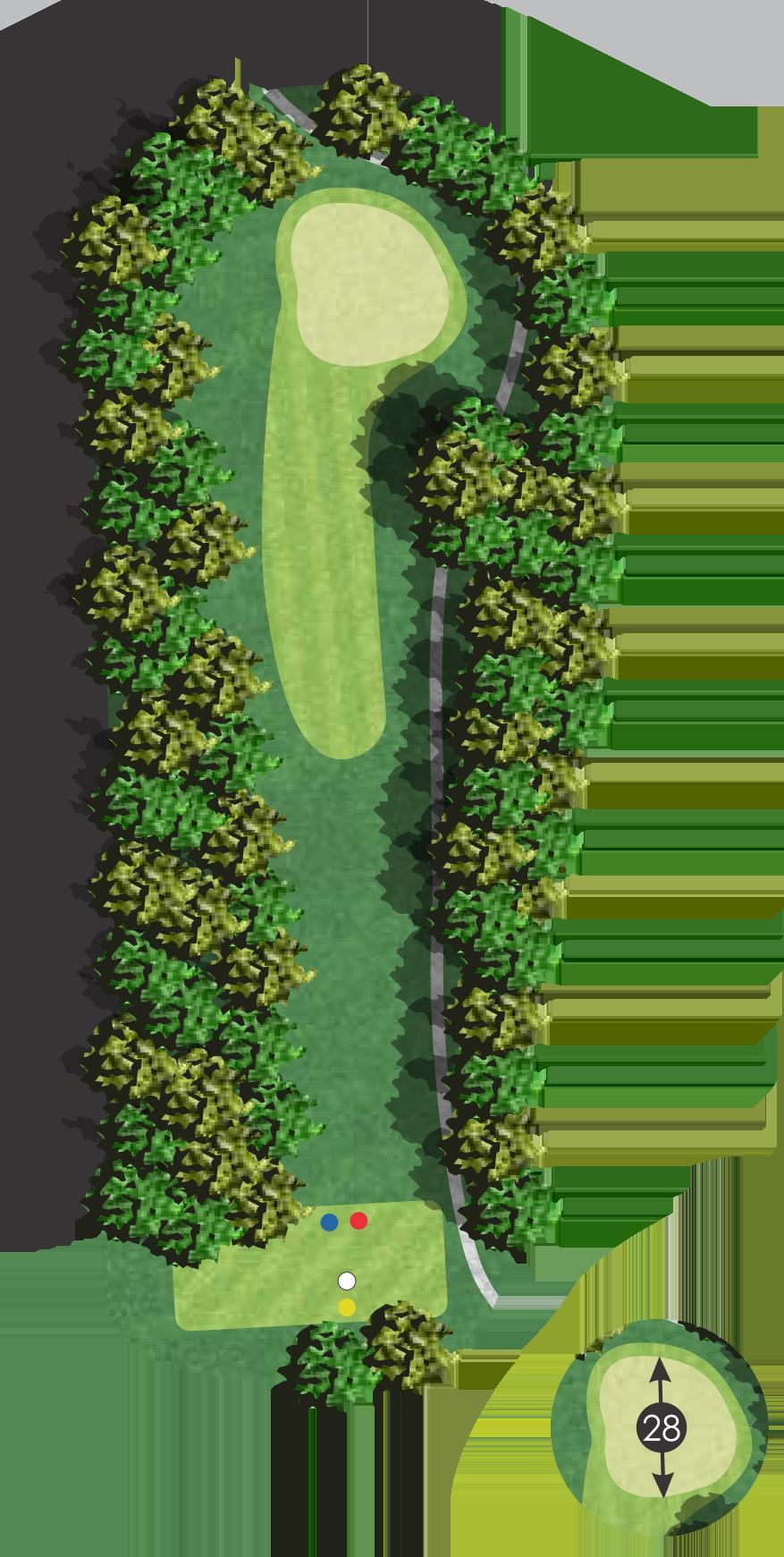 birch 6