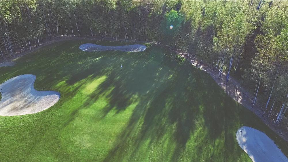 hole #5 - Birch | Par 4/5