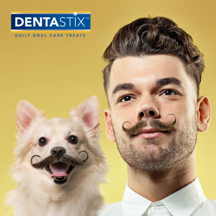 DENTA_Movember.jpg