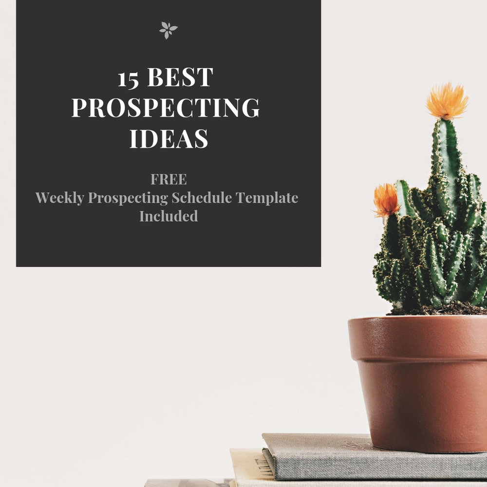 Prospecting Ideas