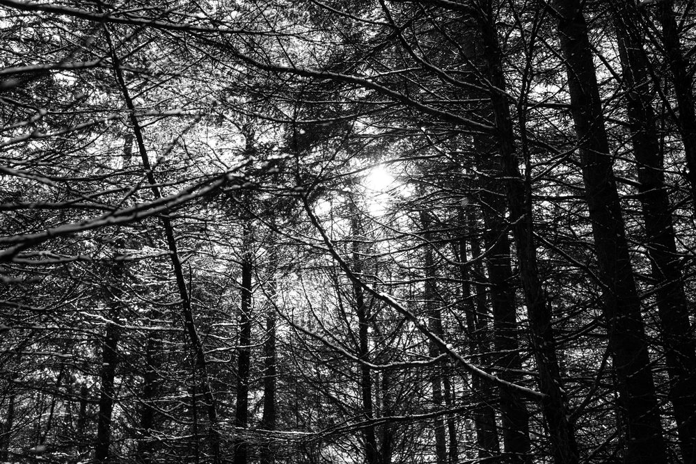 winter documentary photography viara mileva-113623vm.jpg