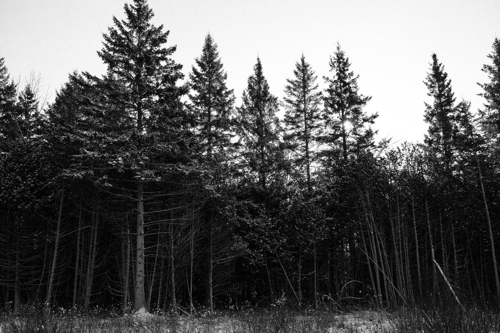 winter documentary photography viara mileva-111324vm.jpg