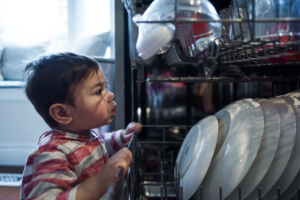 toddler peeks into dishwasher