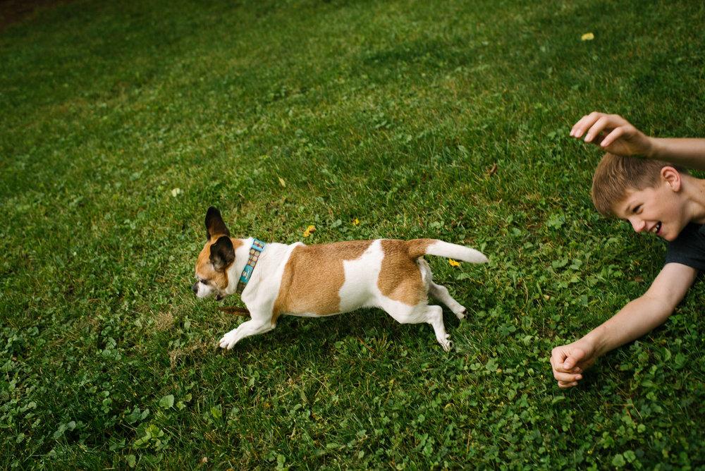 boy chases dog