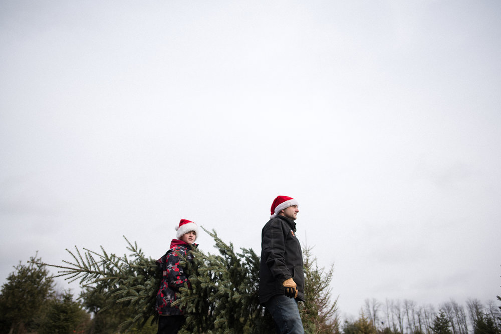 father and son carry a Christmas tree