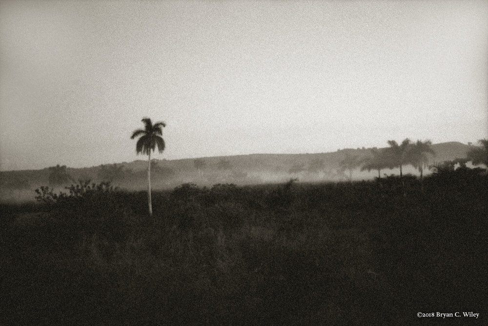 Misty morning countryside landscape along the train route from Matanzas to Havana.  Matanzas, Cuba
