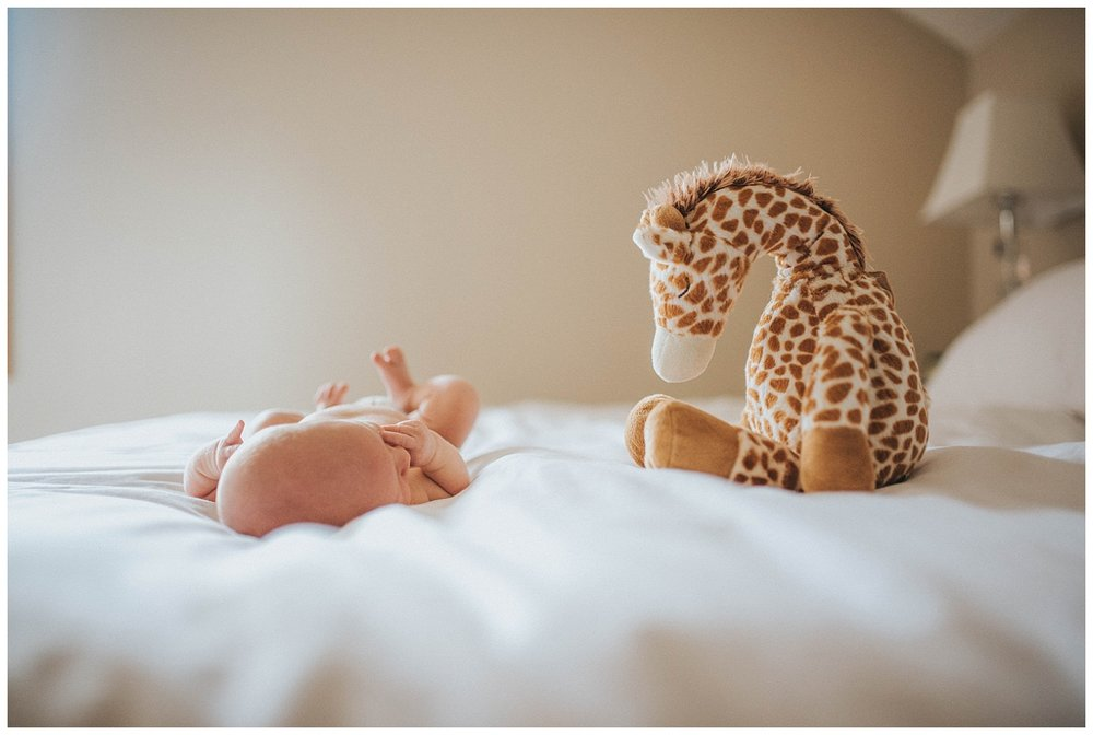 Milwaukee-Newborn-Photographer (15).jpg