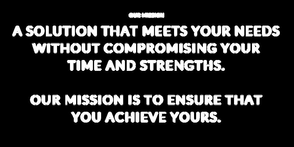 Biz Plan Stan OUR MISSION.png