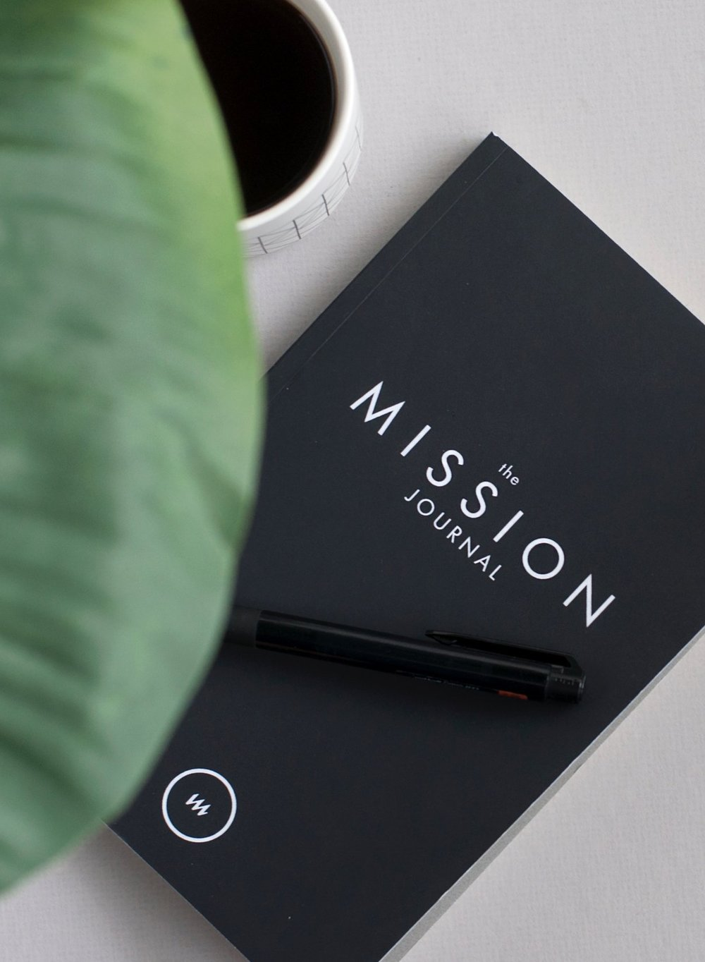 WHY THE MISSION JOURNAL MAKES ALL THE DIFFERENCE - Ever sit down to journal after an amazing day, only to realize you have 10 hours of writing and only 10 minutes of energy?Many people find a blank page paralyzing. The Mission Journal is designed with that in mind - to give you the space and structure to simply engage with the story God is writing in your life during this season.FINALLY, CAPTURE ALL GOD HAS FOR YOU.