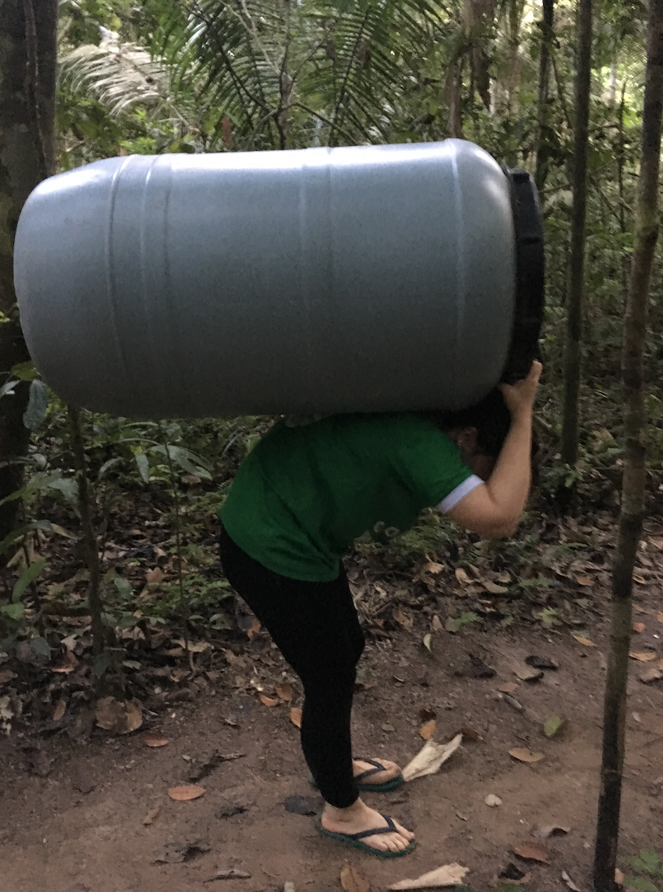 This is how you get supplies in to the jungle