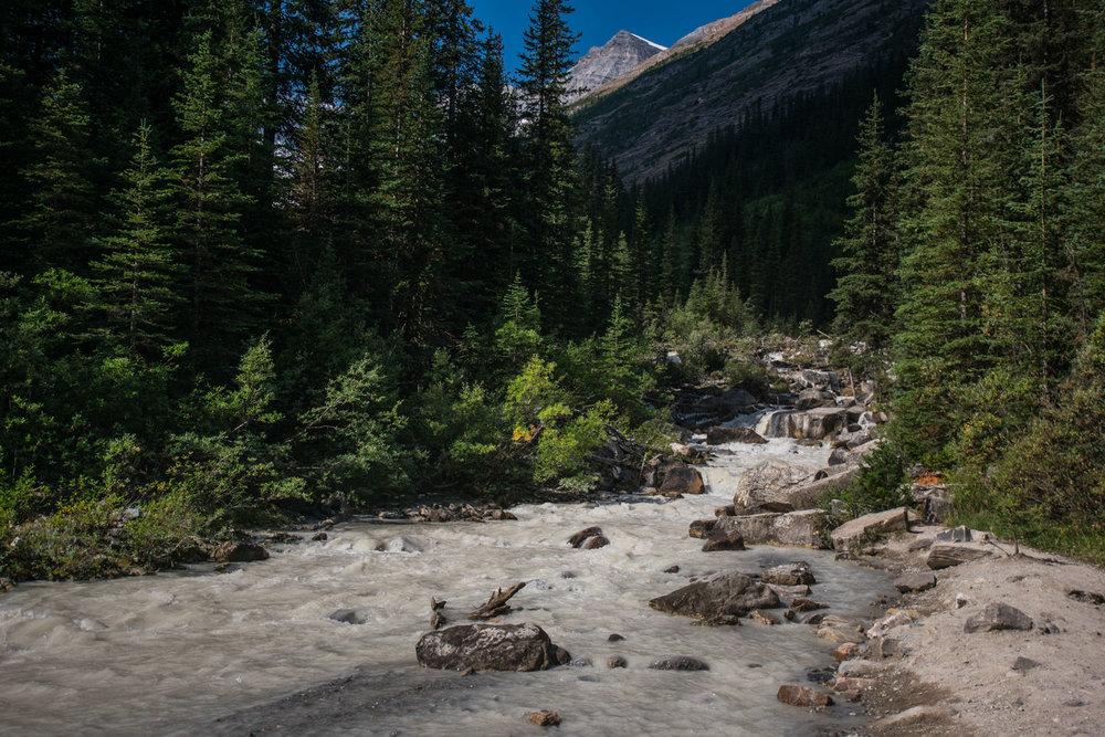 A gushing river