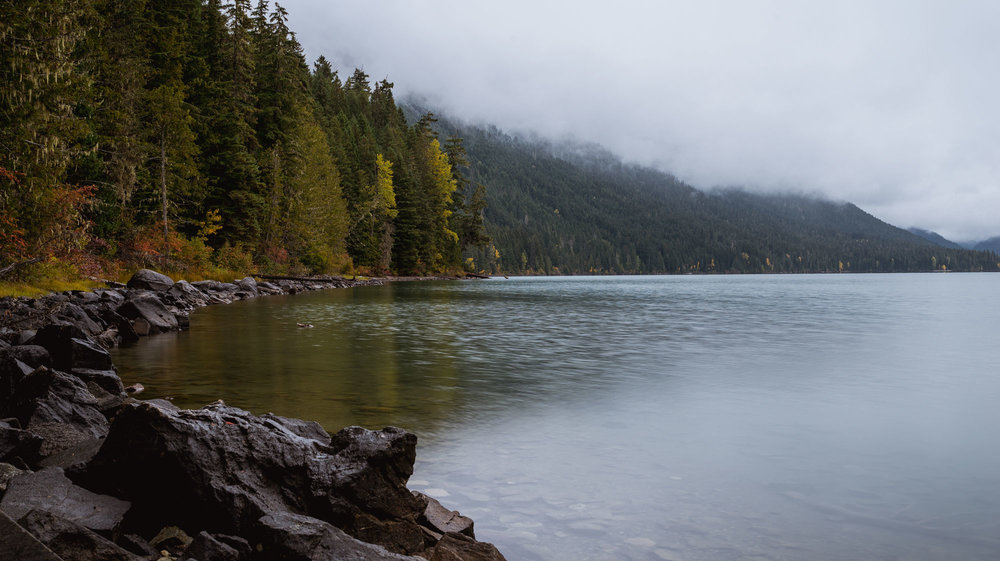 Cheakamus Lake shore