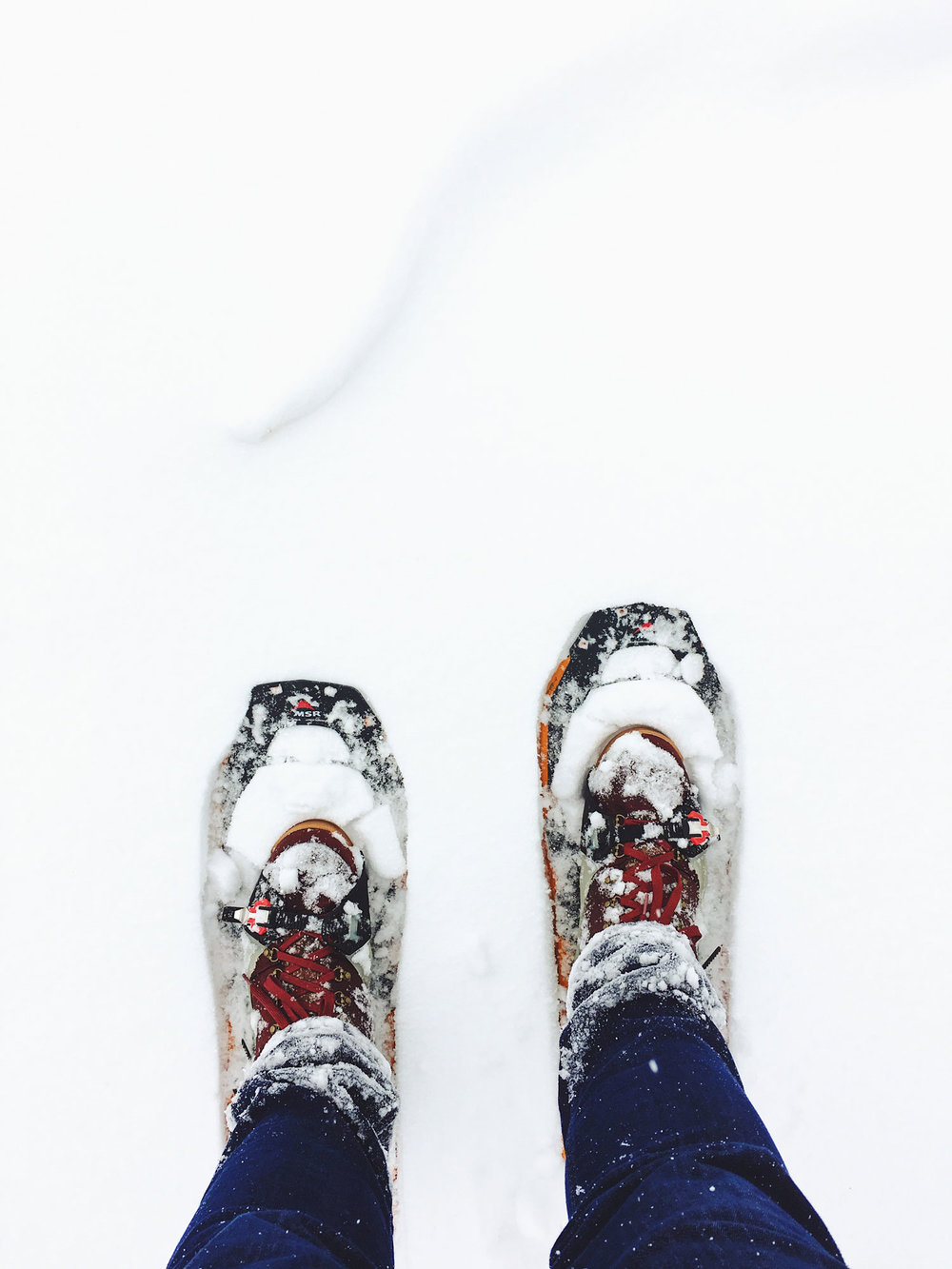 Trek the wilderness in snowshoes