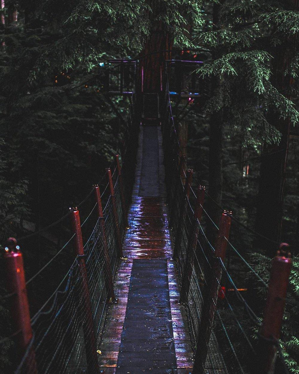 Suspension bridge at Capilano Park