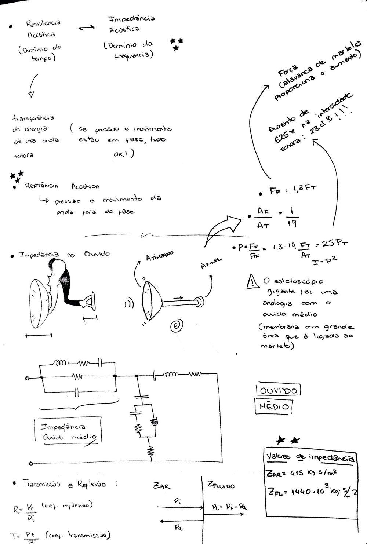 Novo Documento 1_4.jpg