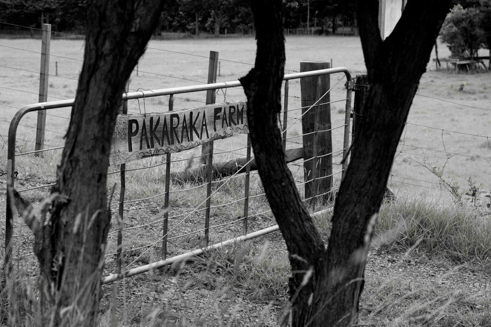 Pakarkaka Gate.jpg