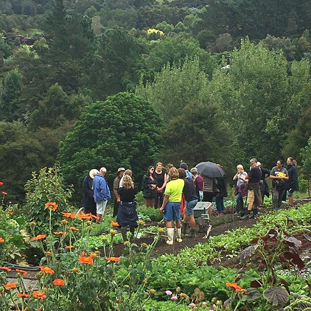 Love the rain but happy the storm isn't hitting us hard during this organic market gardening workshop weekend. #organicmarketgarden #growmorefood #changethefoodsystem