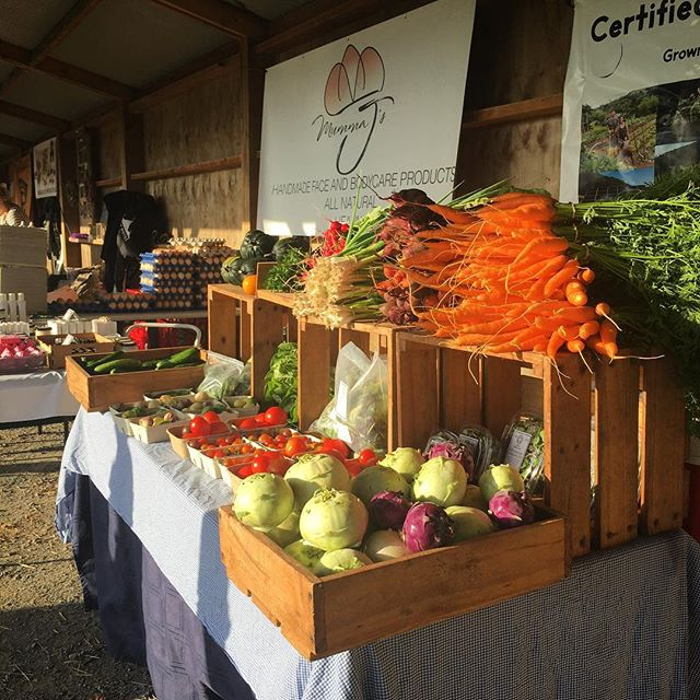 Another beautiful Sunday @clevedonfarmersmarket get all your organic veggies for the week straight for the garden #organicmarketgarden #aucklandfarmersmarket #lovelocal