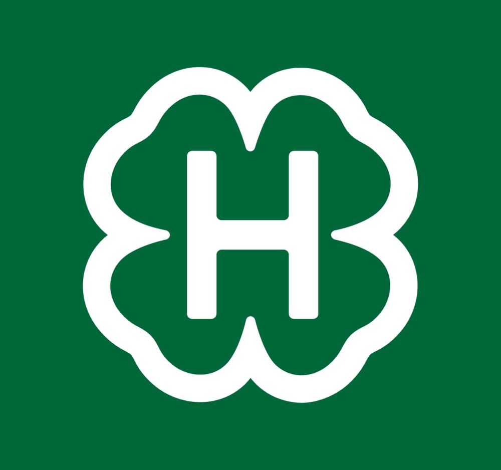 4-H | Student Work - Branding, Design, Web